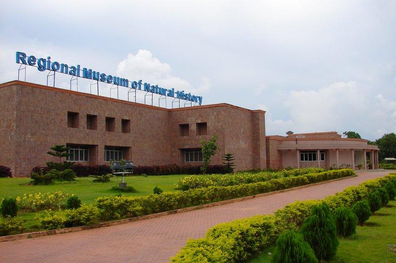 Regional-Museum-Bhubaneswar
