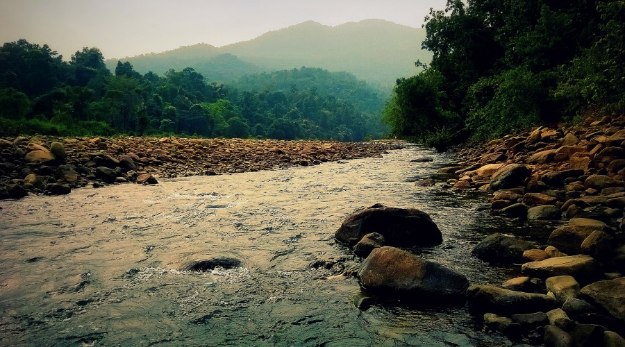Similipal_National_Park