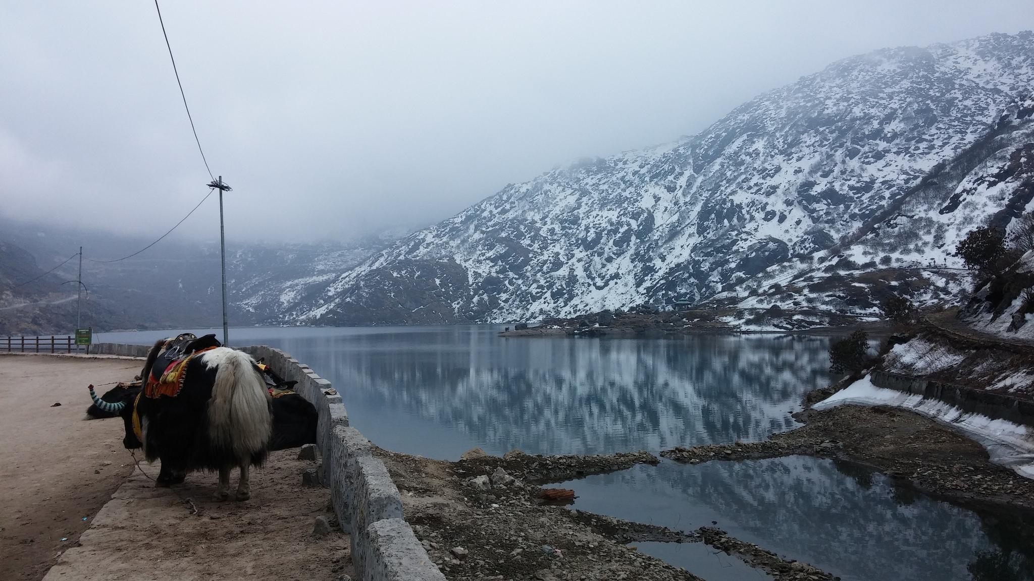 Tsongmo_Lake
