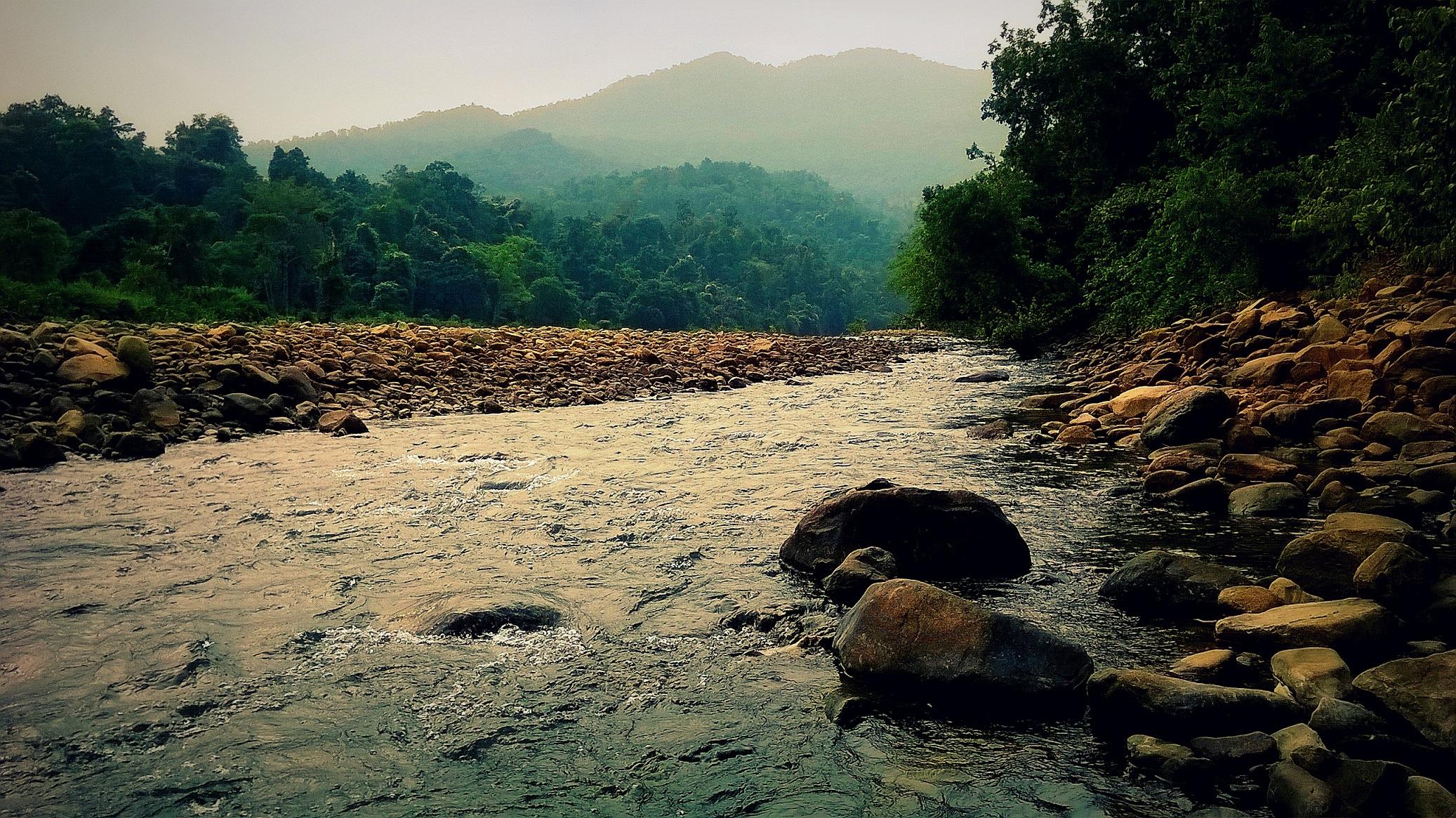 Similipal_National_Park